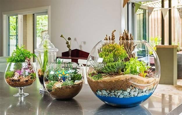 Ideas para decorar con cactus y terrarios