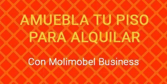 imagen de molimobel business